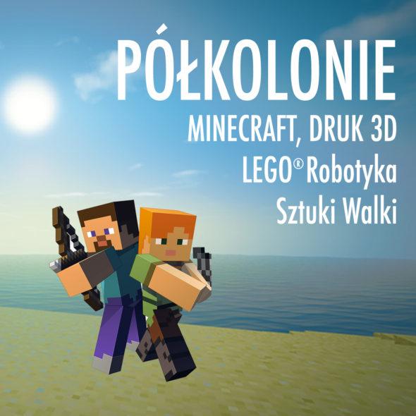 Półkolonie Minecraft, LEGO, druk 3D, sztuki walki